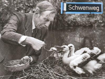 Storchenvater_Schwenweg