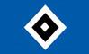 Anmelderunde 2021: HSV-Schulsichtung (Deadline: 21. Januar 2021)